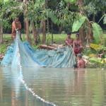 Fischzucht als Grundernährung